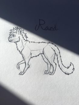 New sona Raed by Ghostray567