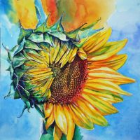 Sunflower by Lusidus