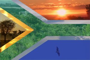 the nature of South Africa by HMSDexter