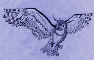 Flying Owl by Thinderil