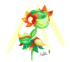 Bellossom used Sunny Day!