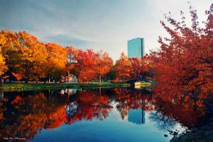 Autumn in Boston II by MyLifeThroughTheLens
