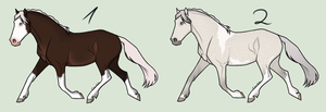 Mystery Horse Adopt *Sold* by TreckyQueen
