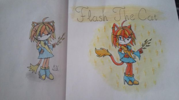Old vs new: Flash The Cat by HiroUltimate