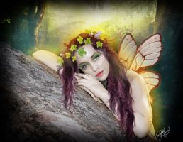 Forest Fairy by concettasdesigns