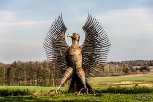 Polish eagle in the museum in Bedomin by wiwaldi24