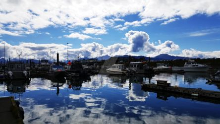 Boats at the Harbor in Homer, Alaska