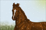 Canadian snow by Rosenhill