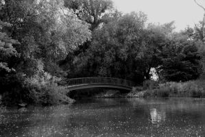 The bridge to the other side by Sanyai90