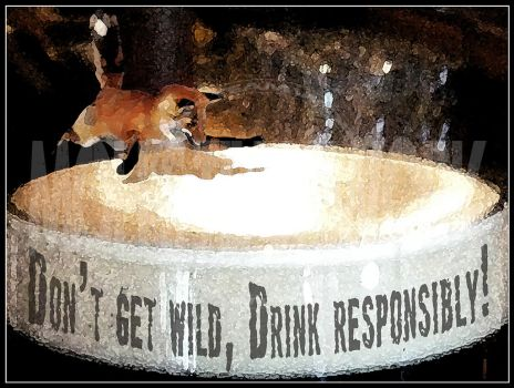 Don't get wild, Drink responsibly! by mohokta81