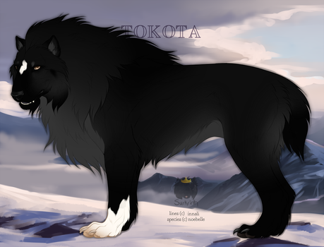 Black Beauty 29438 by TotemSpirit