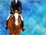 Chestnut Jumper by MollyMay335