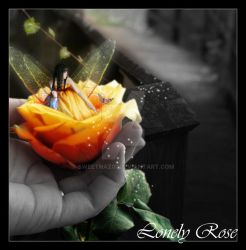 Lonely Rose 2 by sweetnaz01