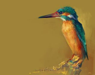 Kingfisher by zhuzhu
