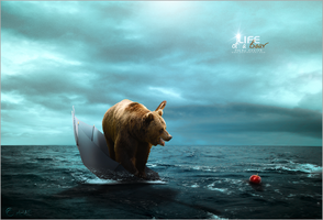 Life of a Bear by AdelGB