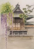 Wisteria at a shrine by blacktsubu