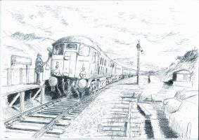 Class 24s at Penmaenpool by klambert94