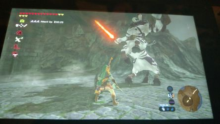I just beat a Silver Lynel with ease by VX9