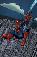 Amazing Spider-Man ~Return of Peter Parker Colors by likwidlead