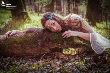 And her song released the sudden spring by MirachRavaia