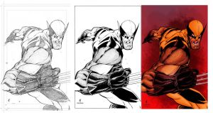 Wolverine pencils,inks and colors by Salvador-Raga