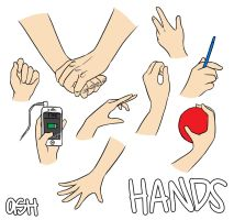 Let's Draw... Hands! by ashesto