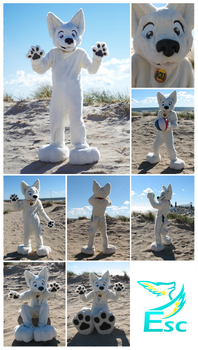 Bolt - White Dog Fursuit - (2014 - 2015) by Eternalskyy