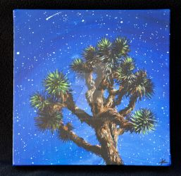 Joshua Tree Night Sky by keziahjeanne