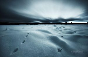 Tracks On A Glowing Snow by JoniNiemela