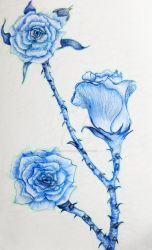 Blue Roses by Melissa-Angelik