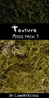 Moss texture - pack 01 by LunaNYXstock