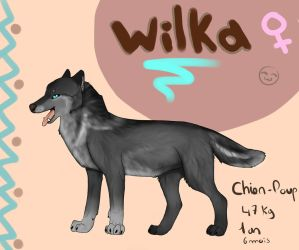 OC reference : Wilka by BlastOfWinter