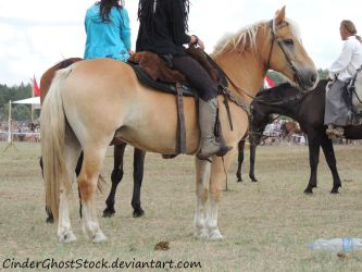 Hungarian Festival Stock 053 by CinderGhostStock