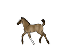 CFH Import 10 - Aspen-Isles-Stable by JadeRavenWolf