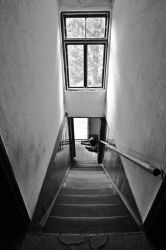 Stairs, window and dog by Janels
