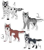 Point adopts-All adopted by Kall-san