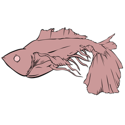 Fish - Inked Vector by serbus