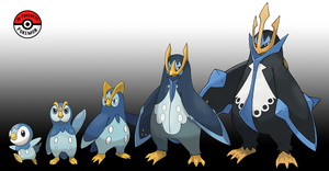 393 - 395 Piplup Line