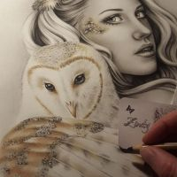 The Owls Wip by Zindy