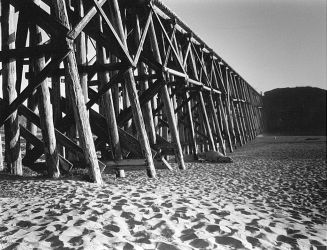 Trestle by CPTofChico