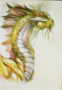 Gold Dragon Portrait by BrassDragon