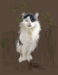 Fence Cat: Another progress report by EvilAnemone