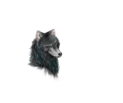 wolf head by sammymoo