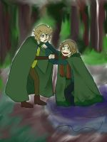 LOTR: Merry and Pippin by goldenflames66