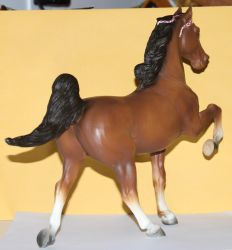 Breyer 5GaiterCommander-Stock4 by Lovely-DreamCatcher