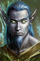 Night Elf Portrait by Cher-Ro