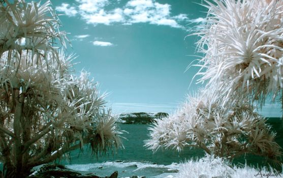 Infrared Fingal Head by AngelaxCollins