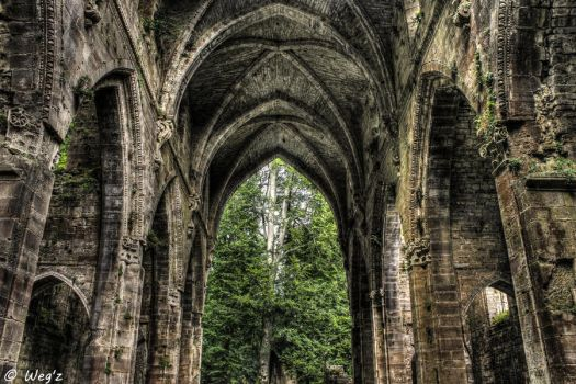 When nature meet architecture II HDR by BioHazardSystem