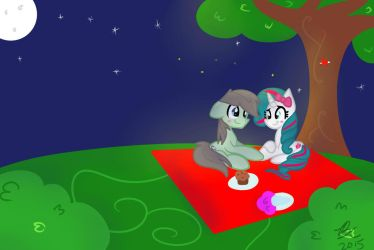 Love Under The Stars~ (Commission) by Euphoriiah