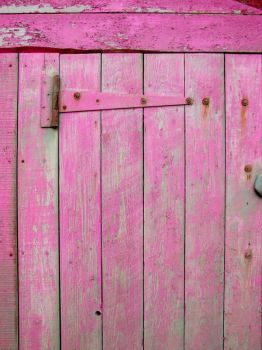 Pink Door by struckdumb